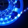 LED-valgusriba-sinine